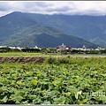 大坡池環湖步道-2019-05-48.jpg