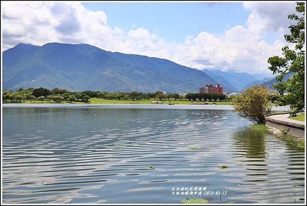 大坡池環湖步道-2019-05-55.jpg