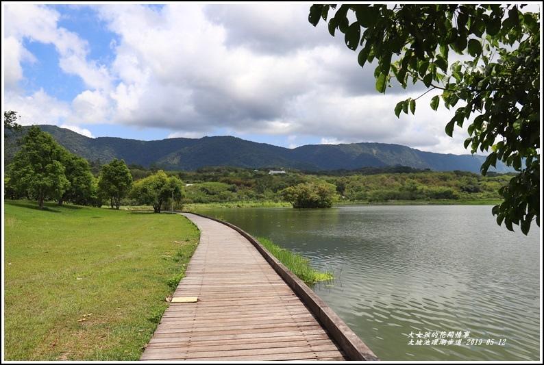 大坡池環湖步道-2019-05-57.jpg
