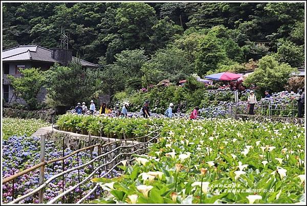 大賞園繡球花園-2019-05-5.jpg