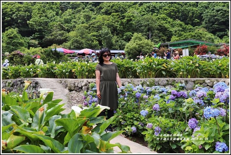大賞園繡球花園-2019-05-6.jpg