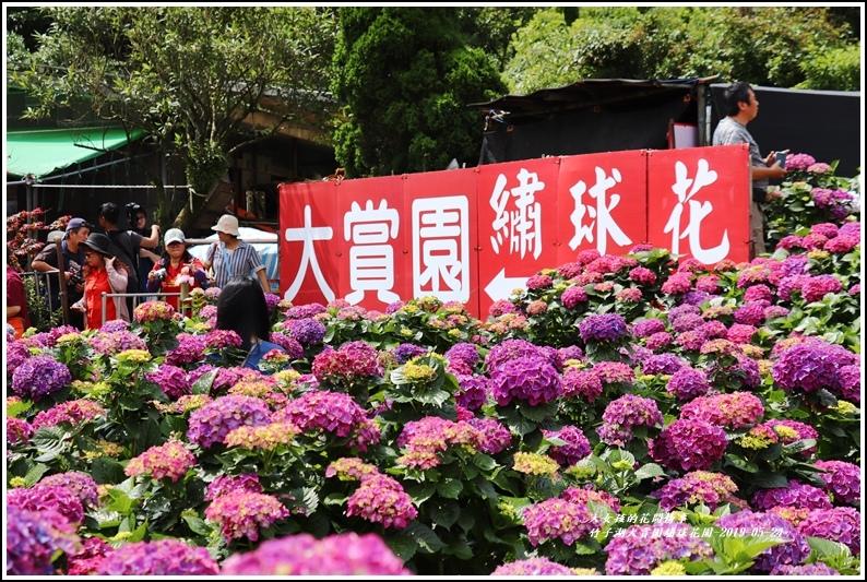 大賞園繡球花園-2019-05-9.jpg