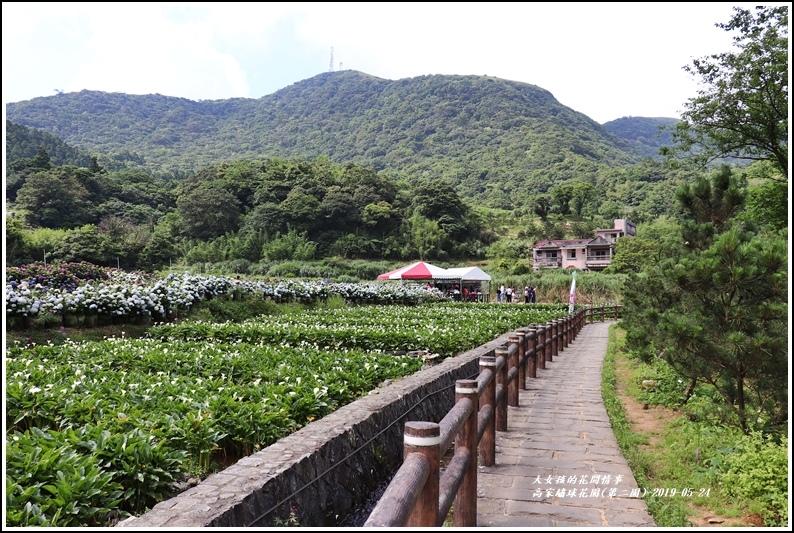 高家繡球花園(第二園)-2019-05-1.jpg