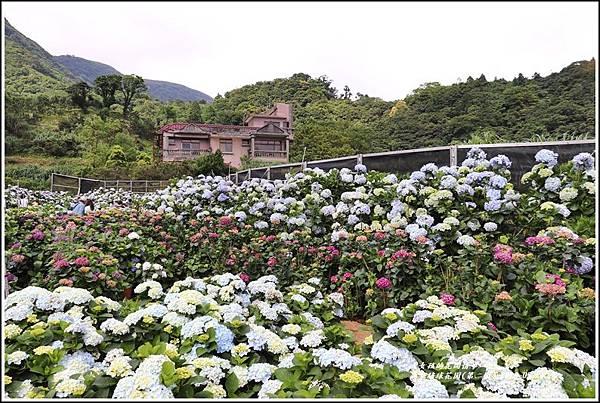 高家繡球花園(第二園)-2019-05-2.jpg