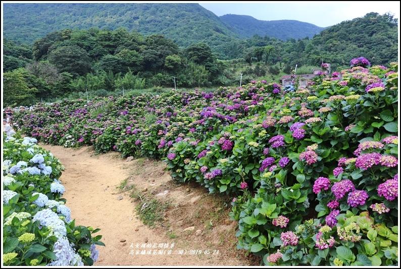 高家繡球花園(第二園)-2019-05-5.jpg