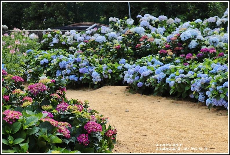 高家繡球花園(第二園)-2019-05-6.jpg