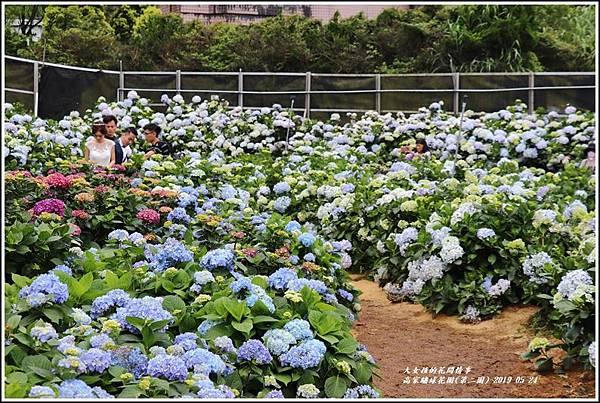 高家繡球花園(第二園)-2019-05-7.jpg