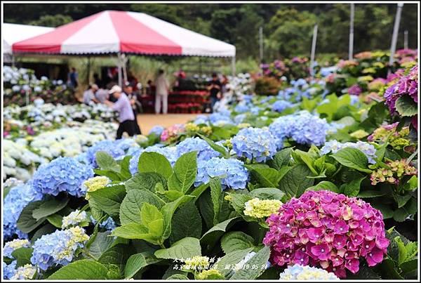 高家繡球花園(第二園)-2019-05-8.jpg