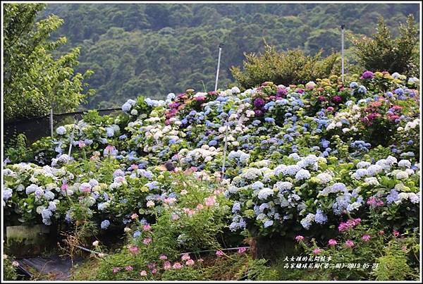 高家繡球花園(第二園)-2019-05-13.jpg