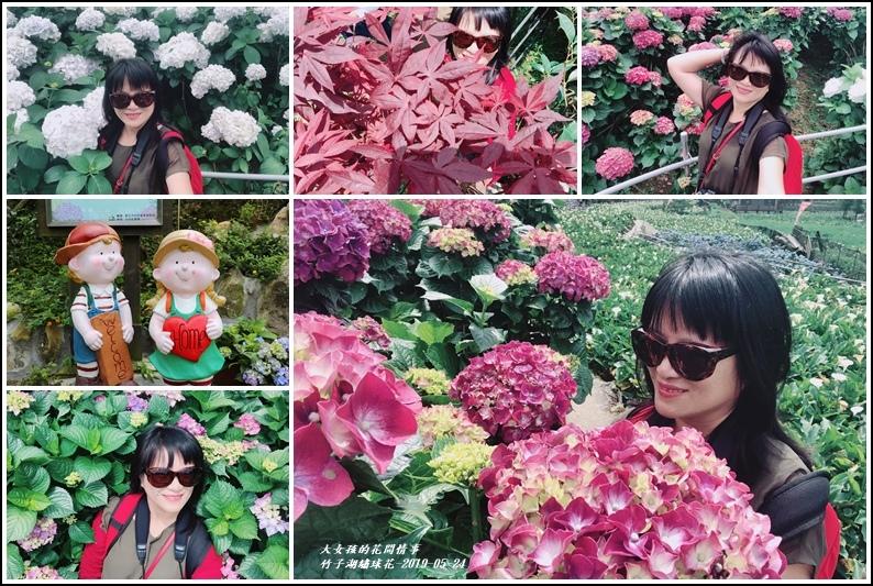 大梯田花卉生態農場-2019-05-16.jpg