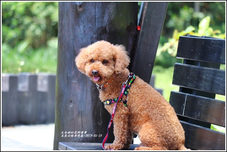 玉長公路休憩區-2019-05-09.jpg