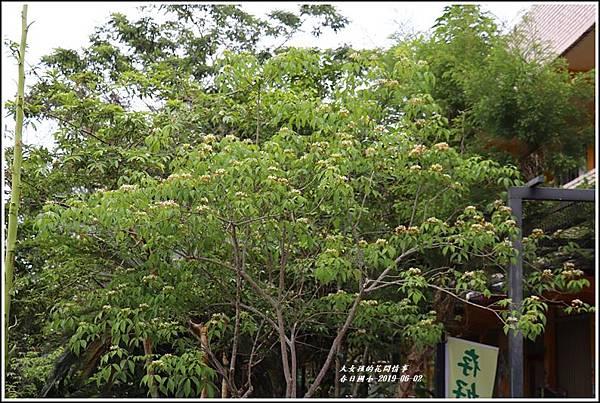 春日國小-2019-06-12.jpg