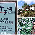 大梯田花卉生態農園-2019-05-002.jpg