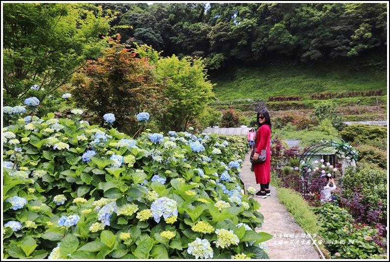 大梯田花卉生態農園-2019-05-023.jpg
