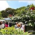 大梯田花卉生態農園-2019-05-030.jpg