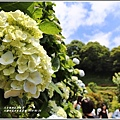 大梯田花卉生態農園-2019-05-032.jpg