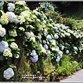 大梯田花卉生態農園-2019-05-034.jpg