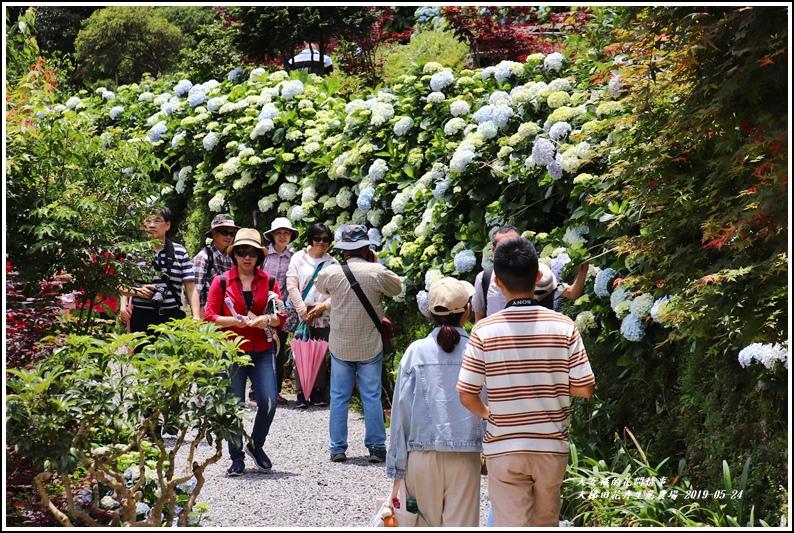 大梯田花卉生態農園-2019-05-037.jpg