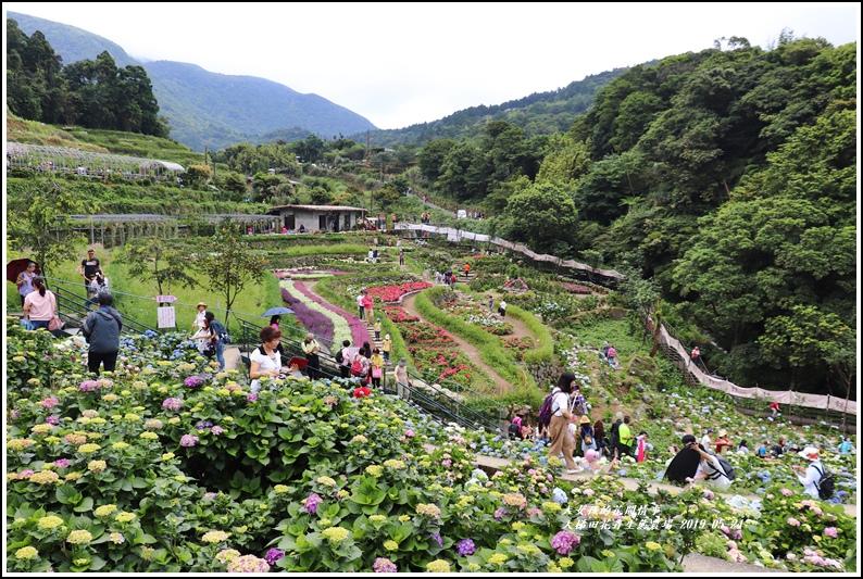 大梯田花卉生態農園-2019-05-040.jpg
