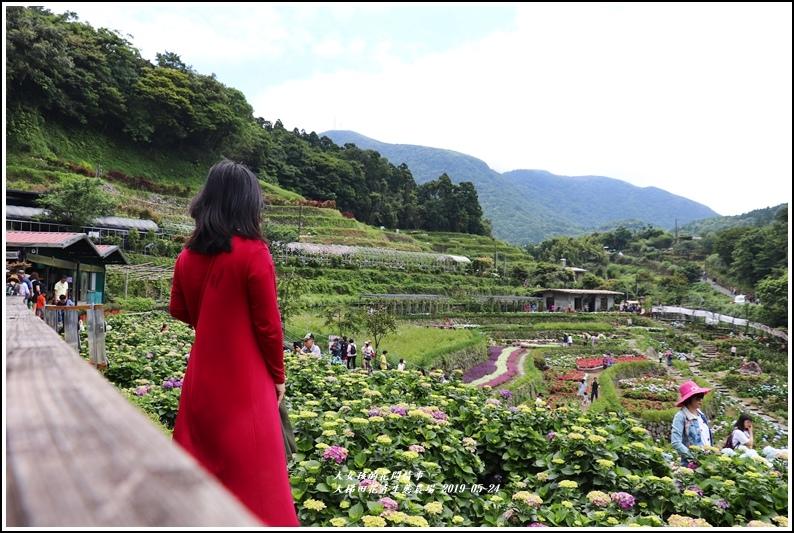 大梯田花卉生態農園-2019-05-041.jpg