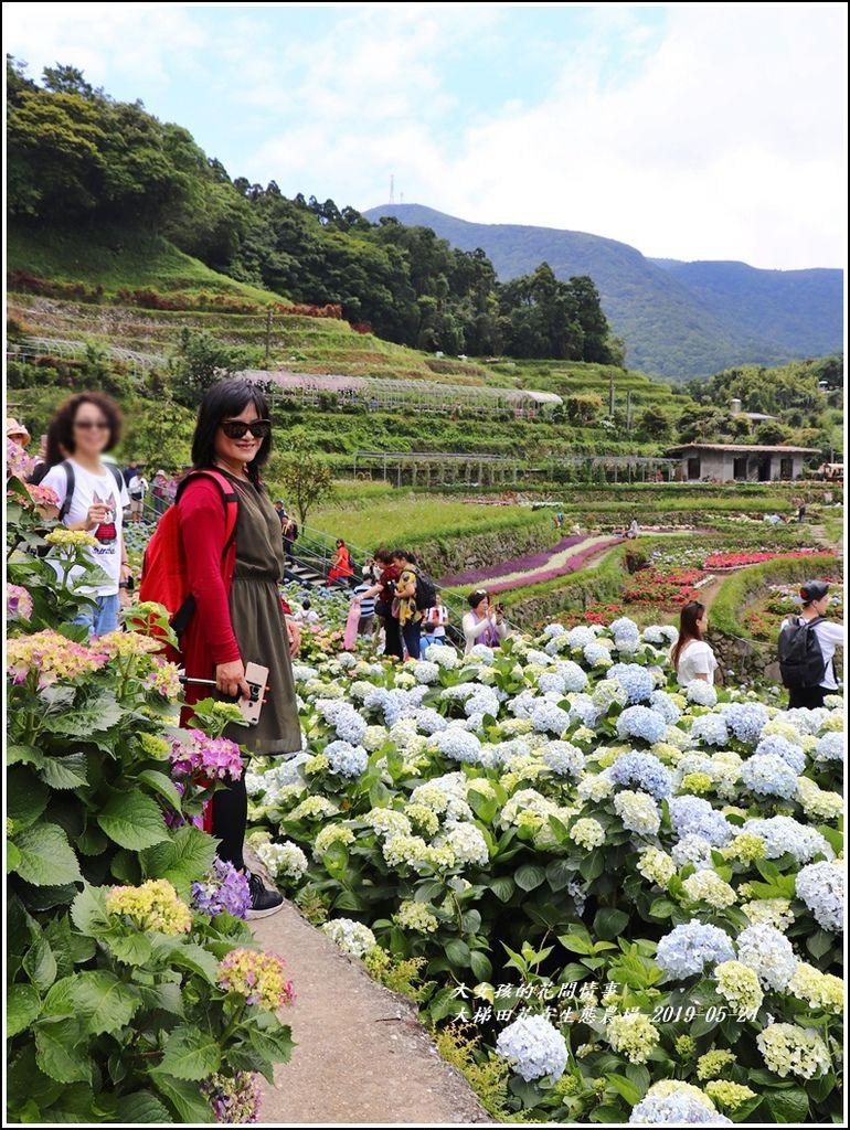 大梯田花卉生態農園-2019-05-044.jpg