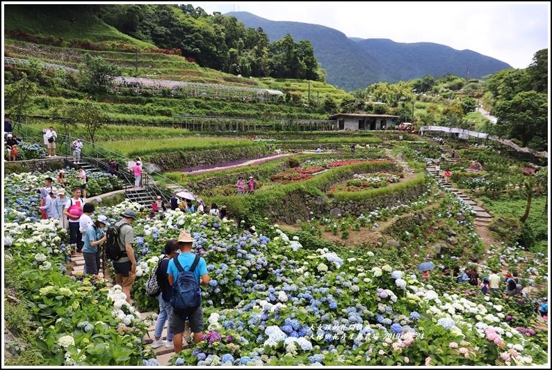 大梯田花卉生態農園-2019-05-048.jpg