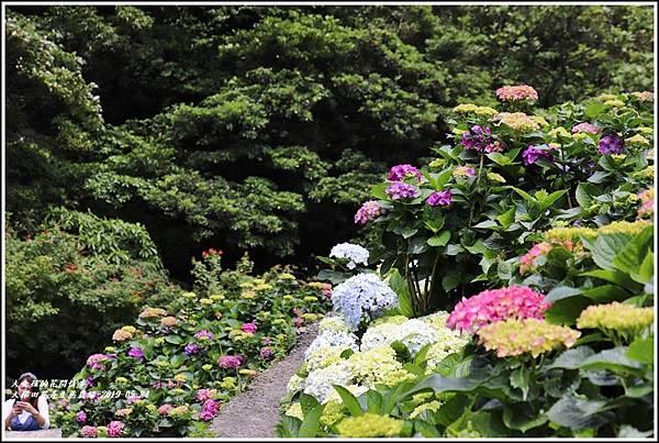 大梯田花卉生態農園-2019-05-054.jpg