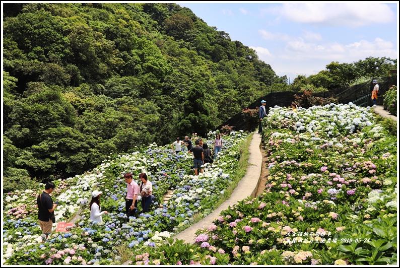 大梯田花卉生態農園-2019-05-061.jpg