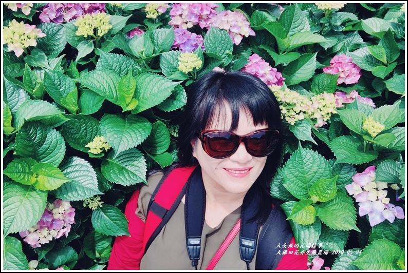 大梯田花卉生態農園-2019-05-070.jpg