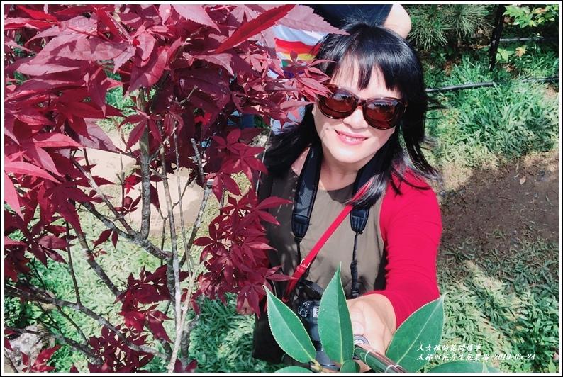 大梯田花卉生態農園-2019-05-072.jpg
