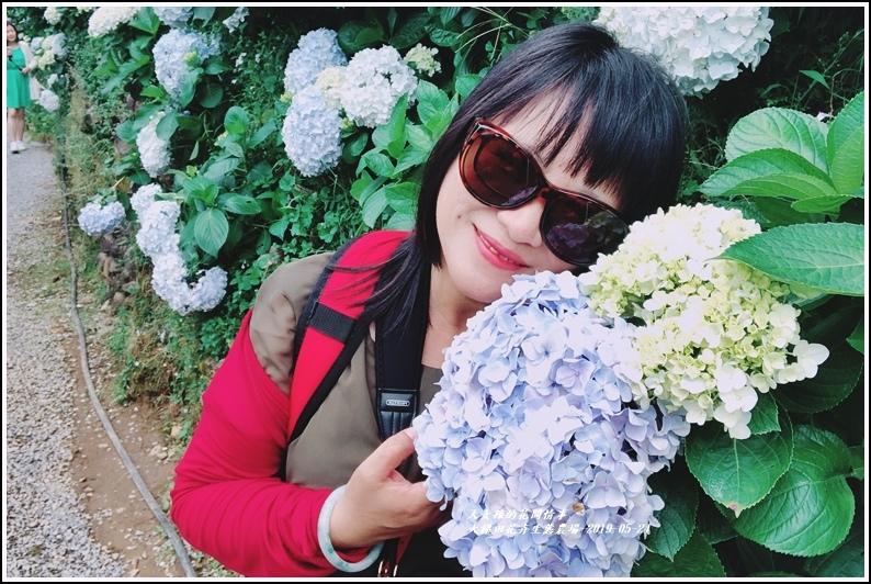 大梯田花卉生態農園-2019-05-073.jpg