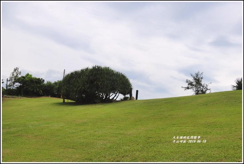 牛山呼庭-2019-06-12.jpg