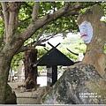 牛山呼庭-2019-06-67.jpg