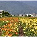 嘉德花田-2019-06-06.jpg