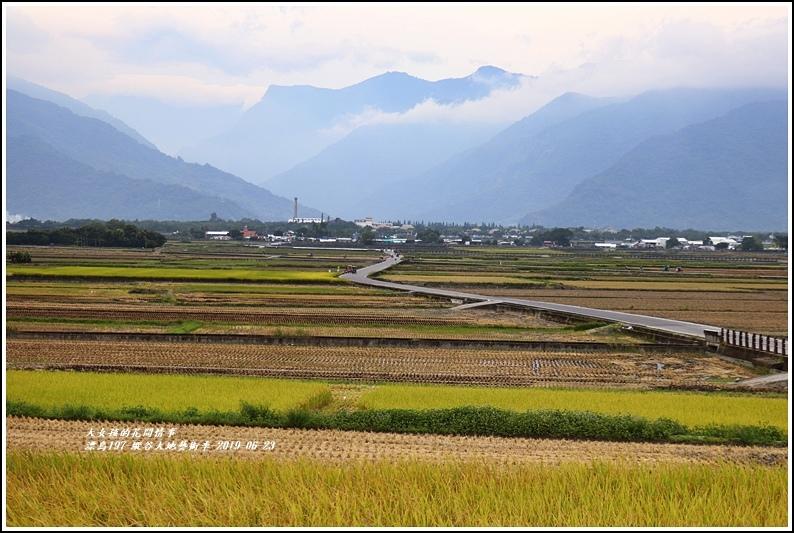 漂鳥197-縱谷大地藝術季-2019-06-18.jpg