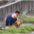 漂鳥197-縱谷大地藝術季-2019-06-19.jpg