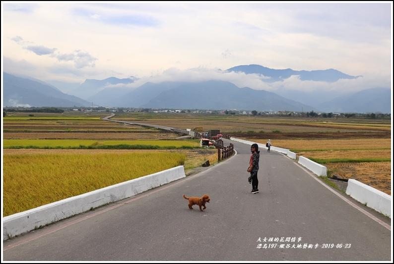 漂鳥197-縱谷大地藝術季-2019-06-21.jpg