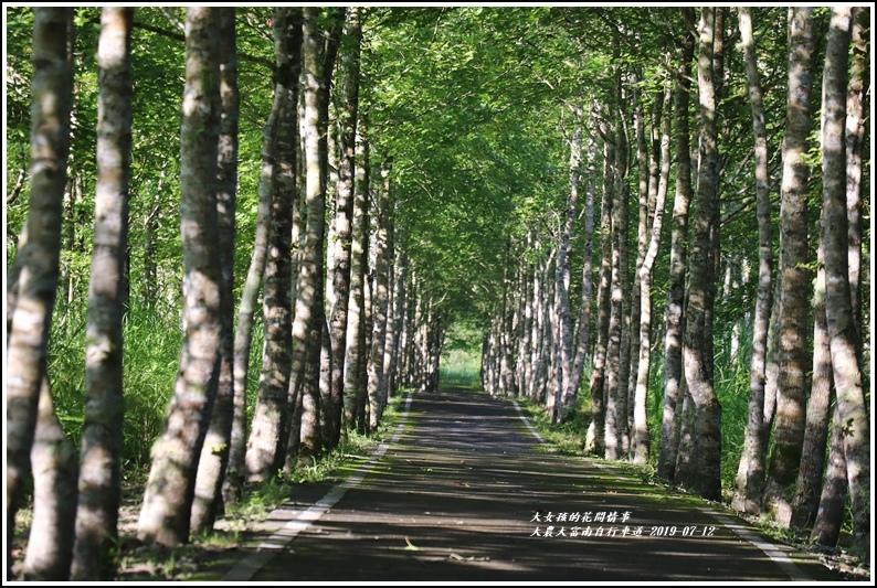 大農大富南自行車道-2019-07-12.jpg