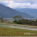 漂鳥197-縱谷大地藝術季-2019-06-82.jpg