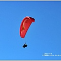 臺灣國際熱氣球嘉年華-2019-08-55.jpg