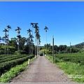 玉龍泉生態步道-2019-08-04.jpg