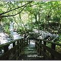 玉龍泉生態步道-2019-08-11.jpg