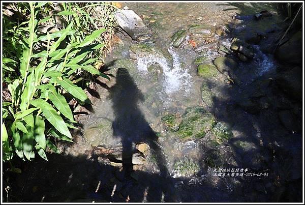 玉龍泉生態步道-2019-08-18.jpg