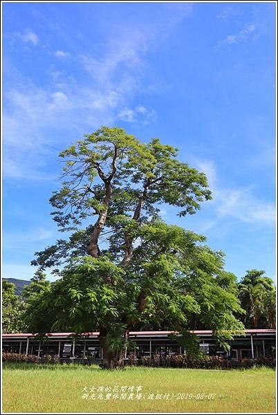 兆豐休閒農場(渡假村)-2019-08-33.jpg