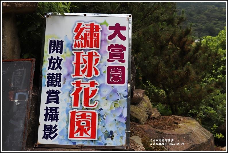 大賞園繡球花(竹子湖)-2019-05-02.jpg