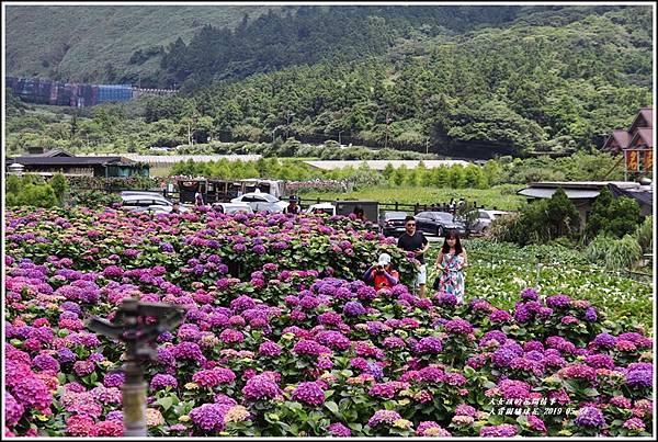 大賞園繡球花(竹子湖)-2019-05-08.jpg