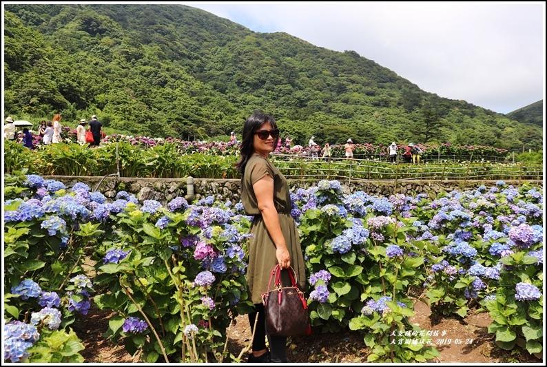 大賞園繡球花(竹子湖)-2019-05-21.jpg