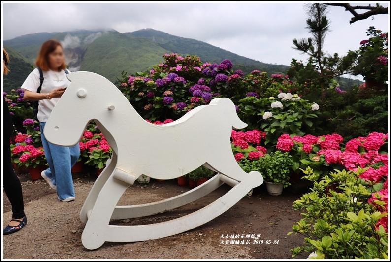 大賞園繡球花(竹子湖)-2019-05-53.jpg