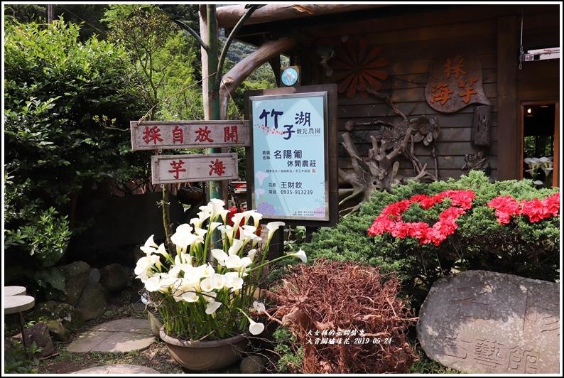 大賞園繡球花(竹子湖)-2019-05-56.jpg