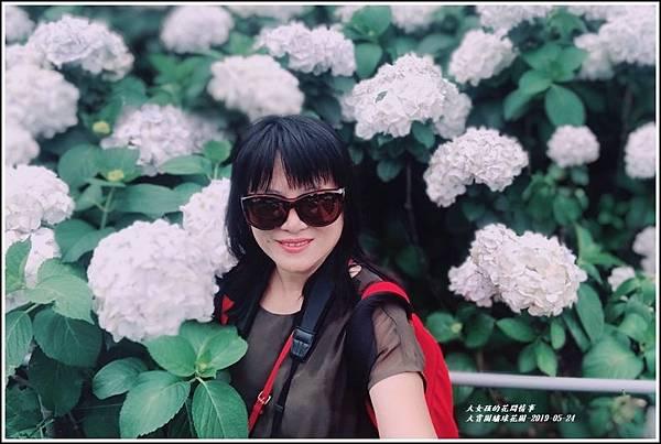 大賞園繡球花(竹子湖)-2019-05-62.jpg
